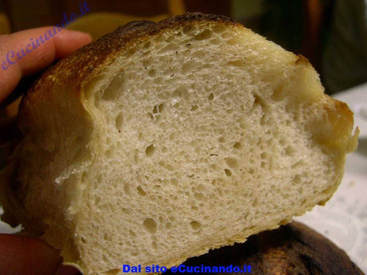 Pane-integrale-con-lievito-naturale-di-piergiorgio-giorilli